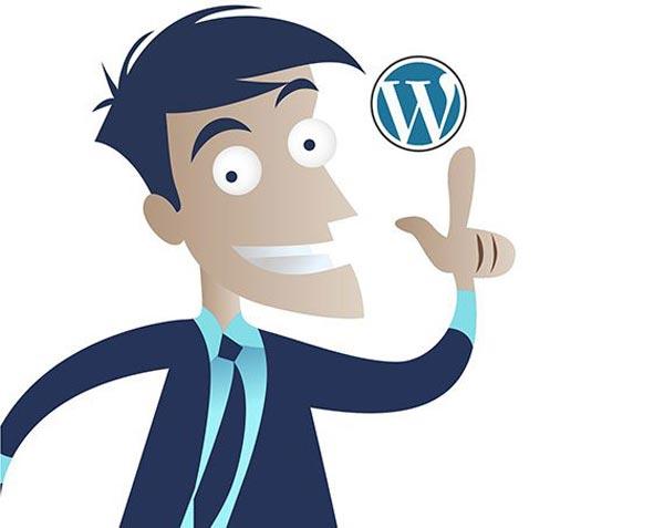 Esta medida sirve para ocultar la información sobre el Theme escogido a la hora de construir tu página web usando el CMS WordPress